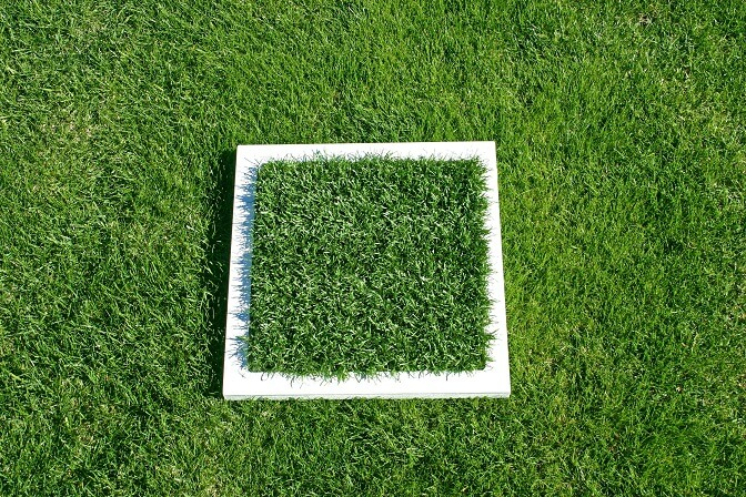 Synthetic Turf Grass Comparison