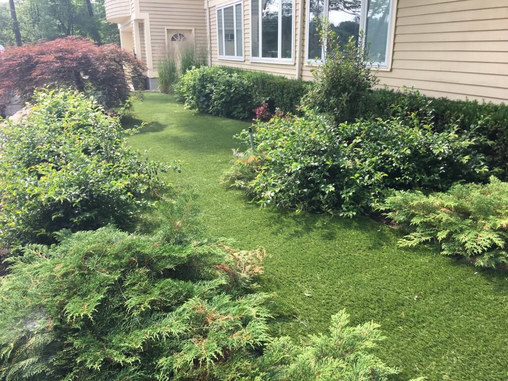 Synthetic Grass Front Yard