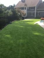 Back yard synthetic grass Southboro MA