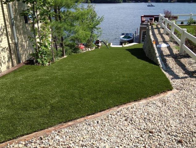 waterless grass near lake