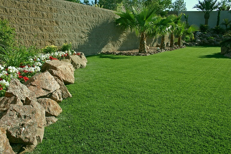 synthetic turf with palm trees