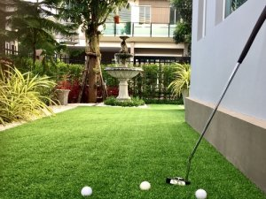 An image of a turf putting green