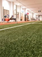 athletic turf in a gym