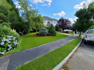artificial turf installation in Saugus